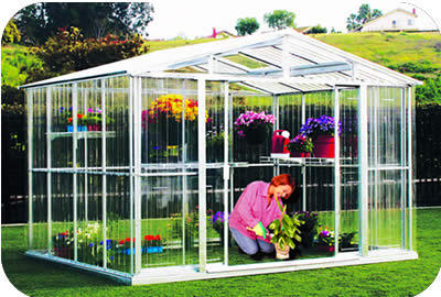 DuraMax 8 x 8 Greenhouse with FREE SHIPPING